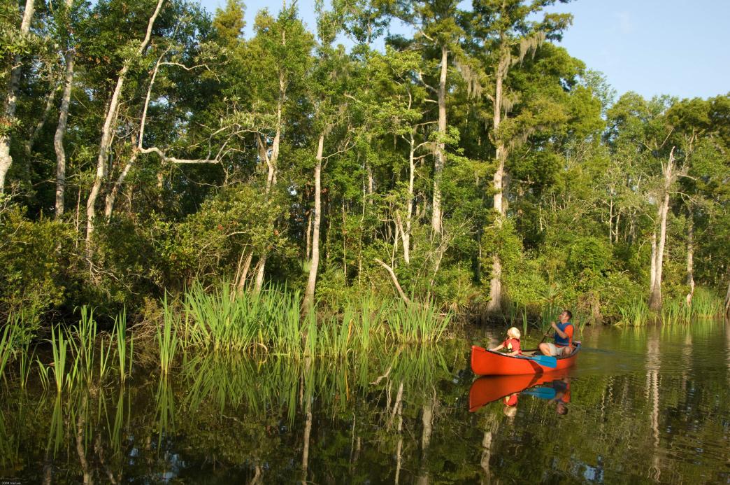 Canoeing on Mississippi's Pascagoula River.
