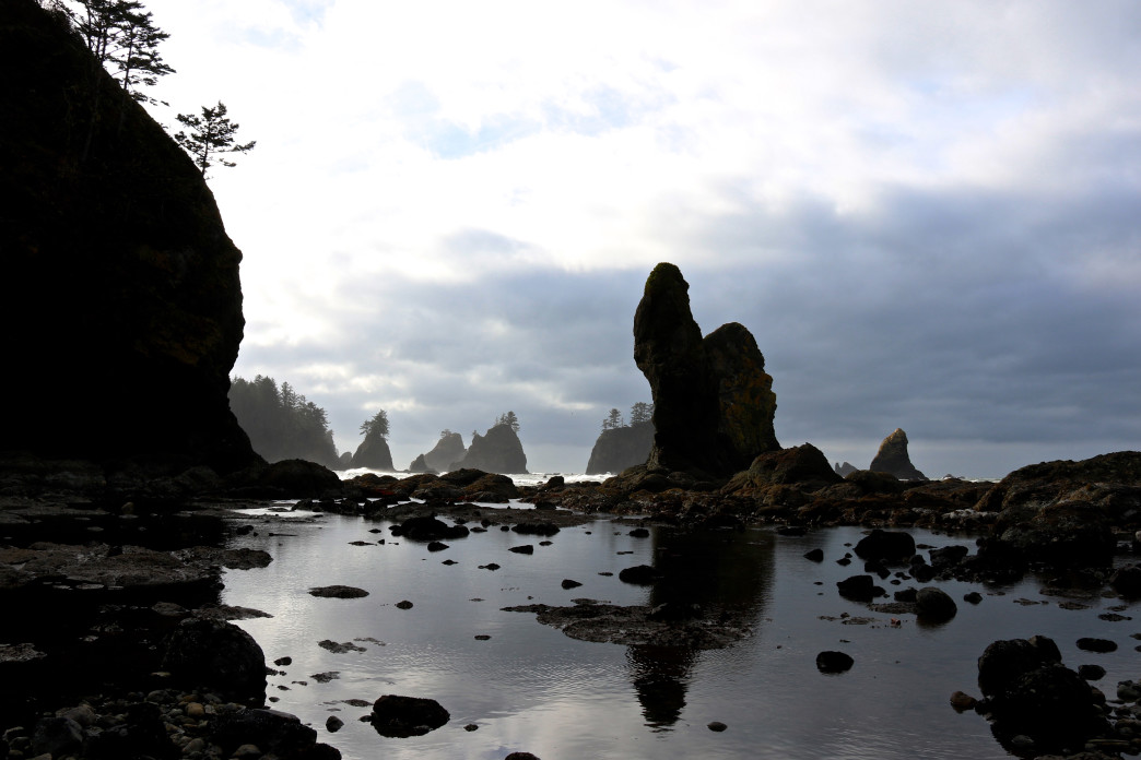Shi Shi Beach in Olympic National Park.