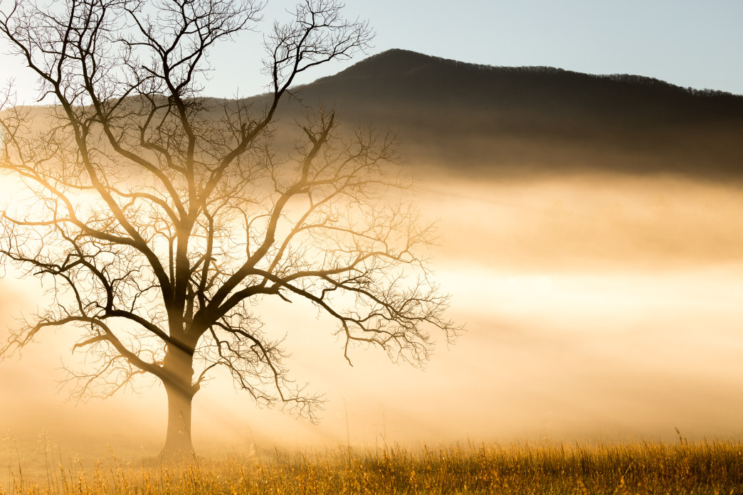 Tennessee Cades Cove