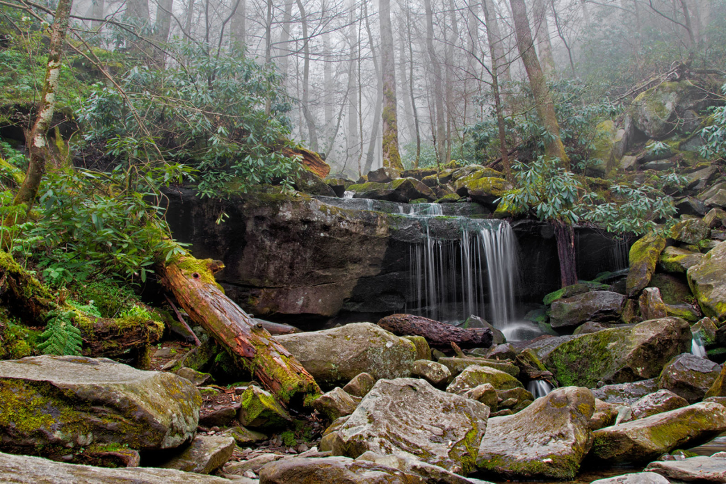 2016_01_Rainbow-Falls-Trail.jpg