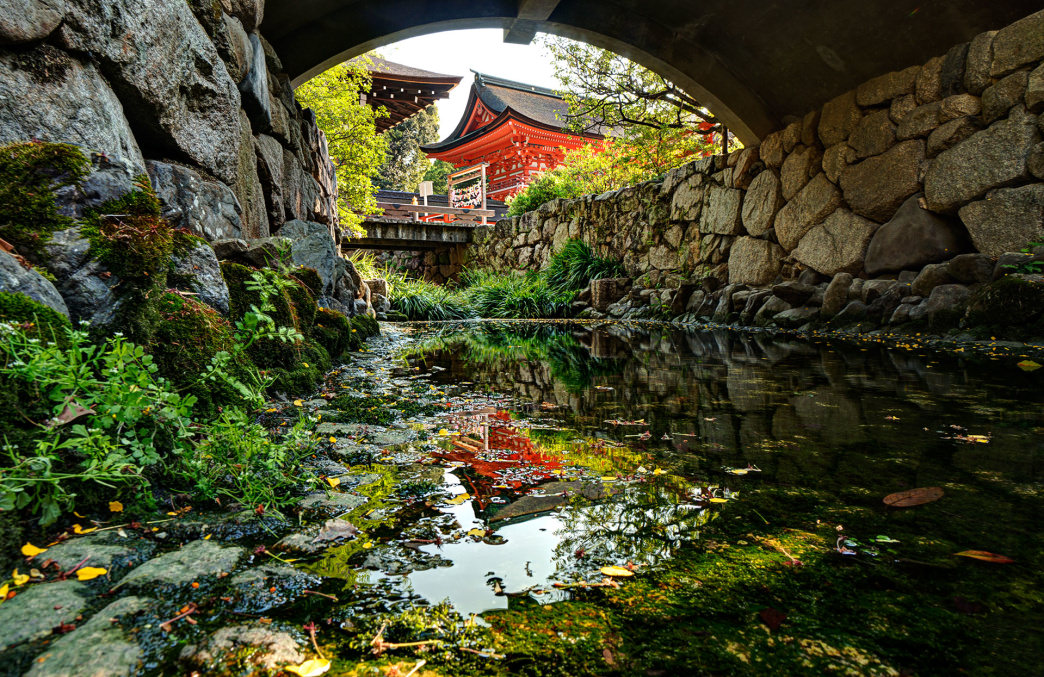 20170523_Japan_shimogamo-shrine-reflection