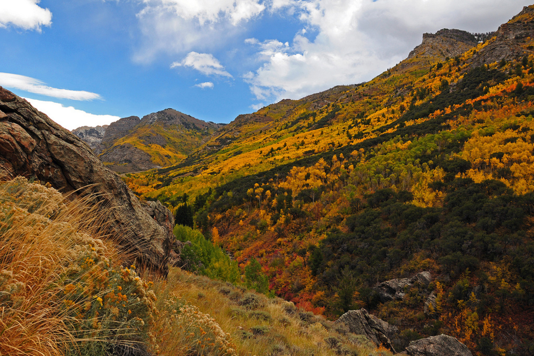 2014_10_amazing-fall-hikes-feature.jpg