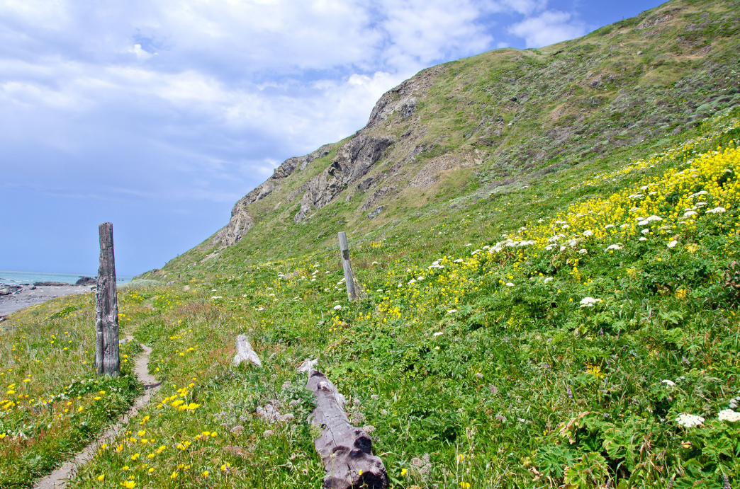 The aptly named Lost Coast offers miles of trails on the California coastline.
