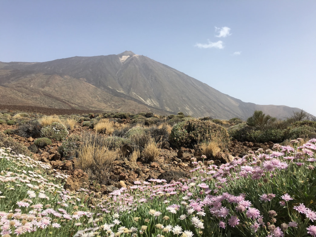 Tenerife_FeatureImage_MountTeide_Credit_Avery_Stonich_IMG_3891